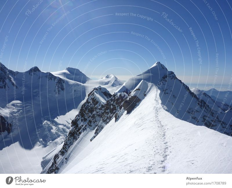 Stairway to heaven Climbing Mountaineering Environment Nature Landscape Cloudless sky Beautiful weather Ice Frost Snow Rock Alps lysimeter Monte Rosa Peak