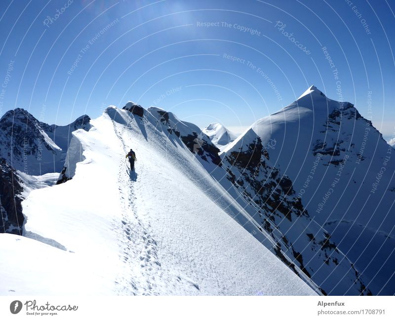 Stairway to heaven II Climbing Mountaineering Environment Nature Landscape Cloudless sky Beautiful weather Ice Frost Snow Rock Alps Monte Rosa lysimeter Peak