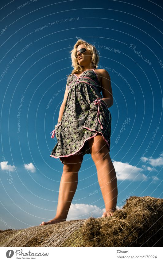 lena in heaven Exterior shot Looking away Feminine Young woman Youth (Young adults) 18 - 30 years Adults Nature Landscape Sky Clouds Grass Fashion Dress