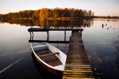 Forgotten the oar Environment Nature Landscape Water Cloudless sky Horizon Autumn Climate Beautiful weather Tree Forest Lakeside Island Rowboat Jetty Footbridge