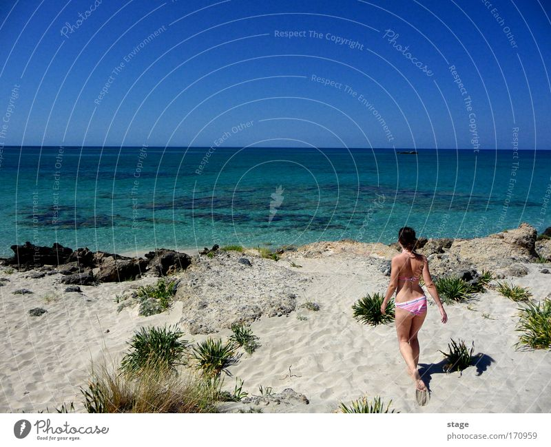 In paradise Colour photo Exterior shot Copy Space left Copy Space middle Day Sunlight Forward Summer Beach Ocean Feminine Young woman Youth (Young adults) 1