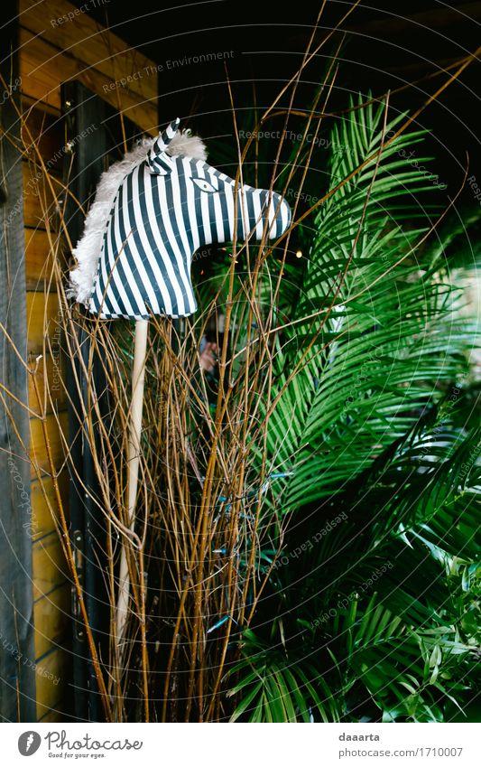 zebra jungle Nature Plant Tree Leaf Animal Joy Life Interior design Lifestyle Style Playing Freedom Wild Leisure and hobbies Decoration Elegant