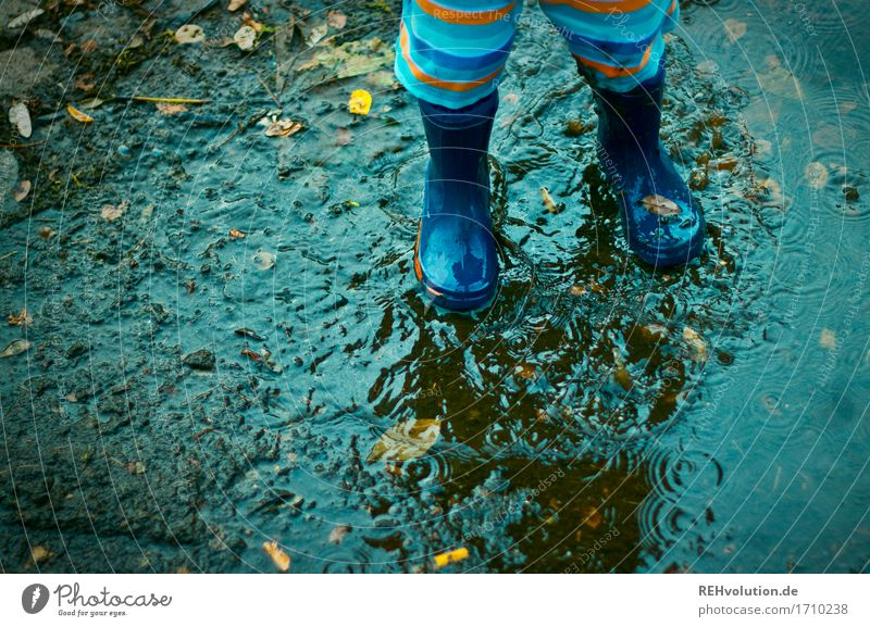 puddle fun Human being Masculine Child Toddler Boy (child) Feet 1 1 - 3 years Rubber boots Water Playing Happiness Happy Small Wet Natural Joy Contentment