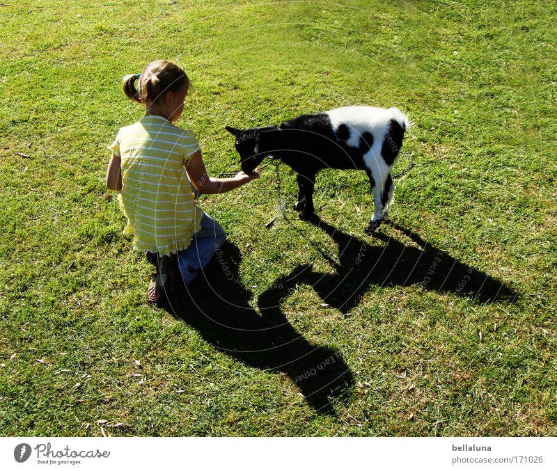 Girl Joy Animal Meadow Emotions Happy Moody Friendship Contentment Baby animal Happiness Cute Pelt Trust Brave Joie de vivre (Vitality)