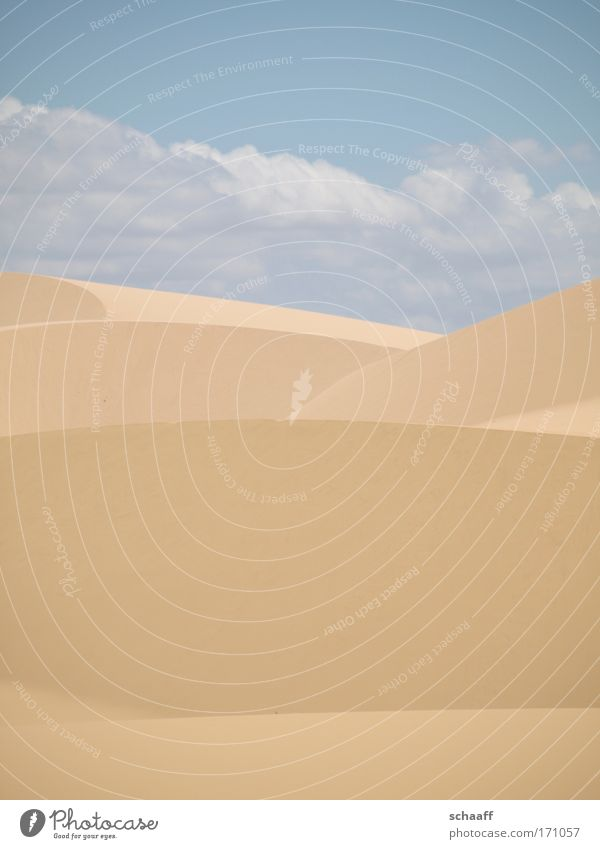 desert lines Colour photo Exterior shot Structures and shapes Deserted Copy Space top Copy Space bottom Day Sunlight Central perspective Happy Vacation & Travel