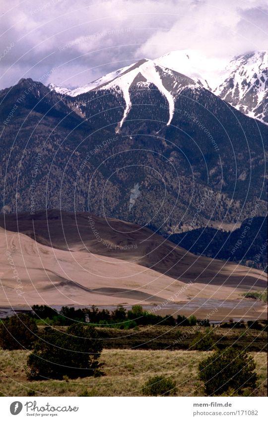 Plant Mountain Landscape Bushes Desert Steppe Set Western Intersection Media Utah