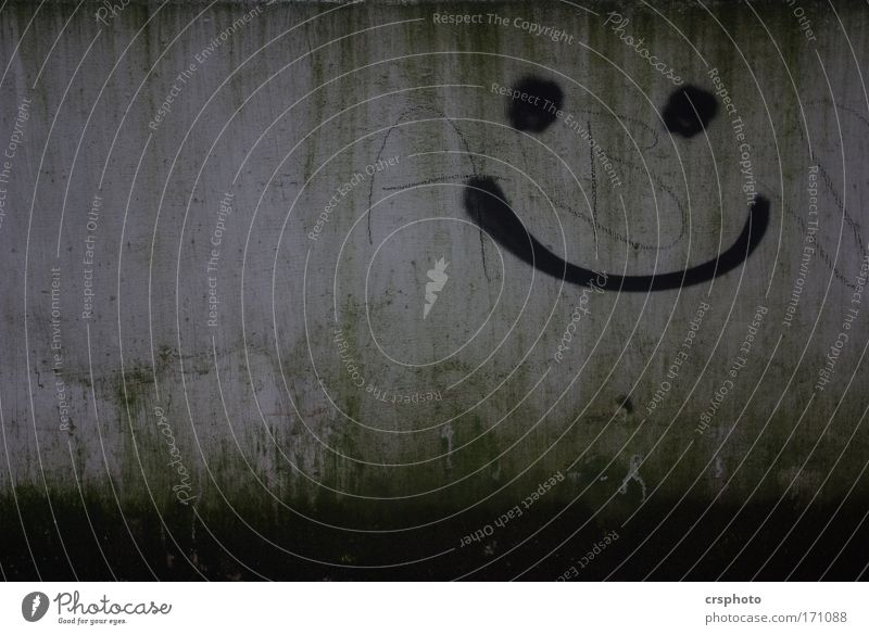 Green Relaxation Face Graffiti Wall (building) Laughter Wall (barrier) Gray Contentment Smiling Happiness Concrete Friendliness Positive Enthusiasm Euphoria