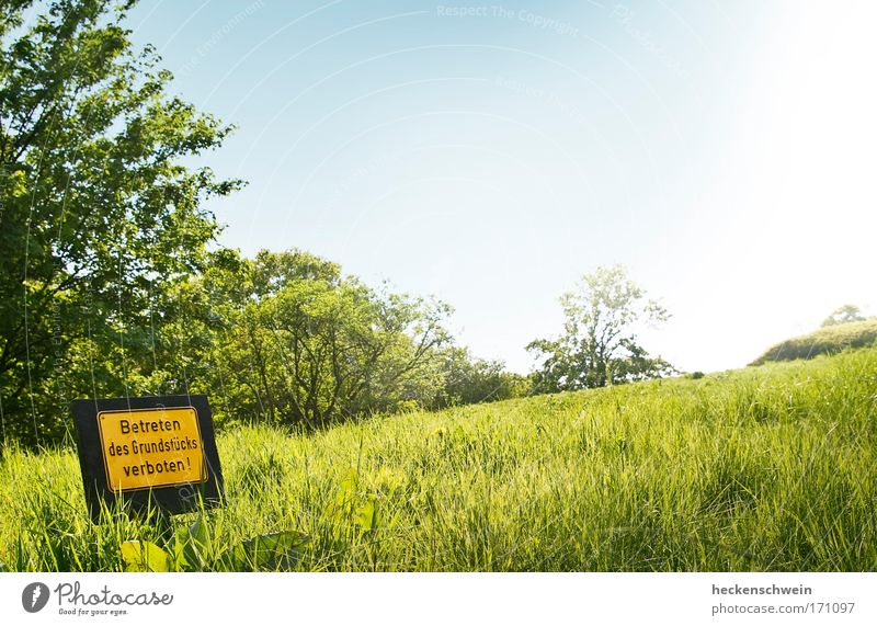 Sky Nature Summer Meadow Landscape Grass Park Horizon Signs and labeling Characters Hill Signage Longing Idyll Border