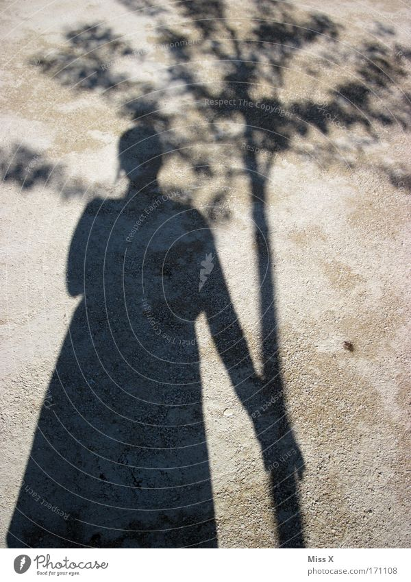 My friend the tree Black & white photo Exterior shot Shadow Silhouette Partner Life 1 Human being Nature Beautiful weather Tree Park Street Lanes & trails Sand