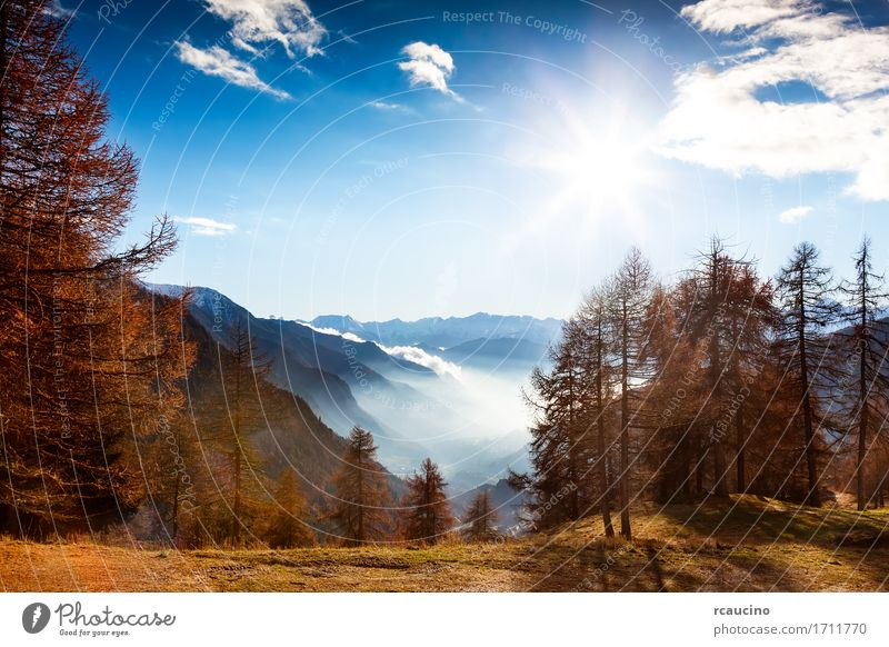 Mountain landscape in autumn Beautiful Vacation & Travel Tourism Sun Winter Snow Nature Landscape Sky Autumn Tree Forest Alps Moody Ancient Antique aosta Europe