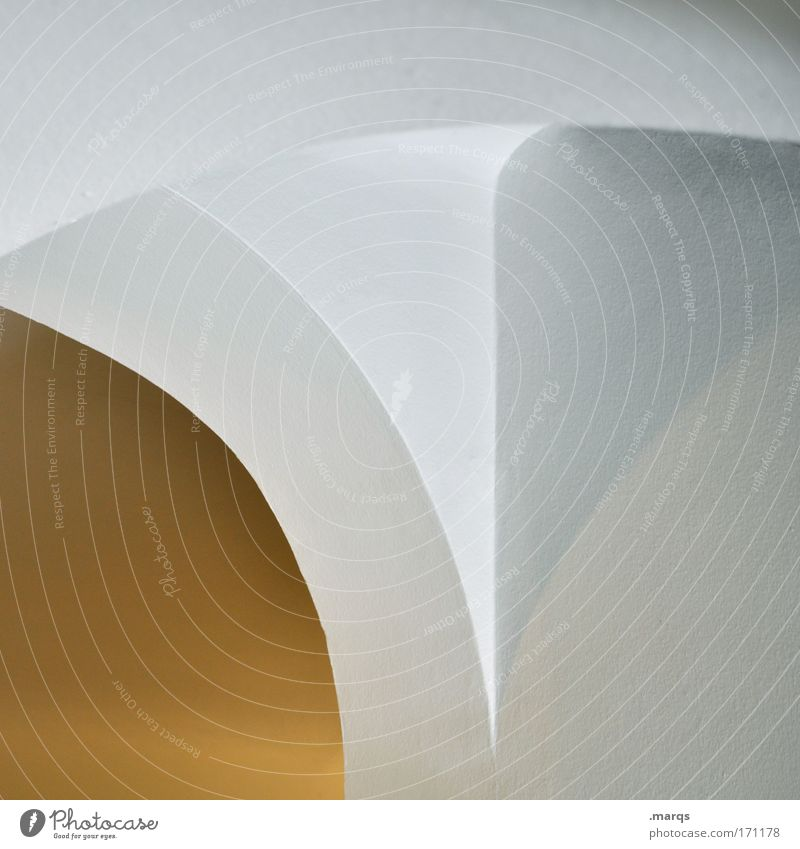 vault Subdued colour Interior shot Abstract Structures and shapes Elegant Style Design Living or residing Interior design Building Architecture Wall (barrier)