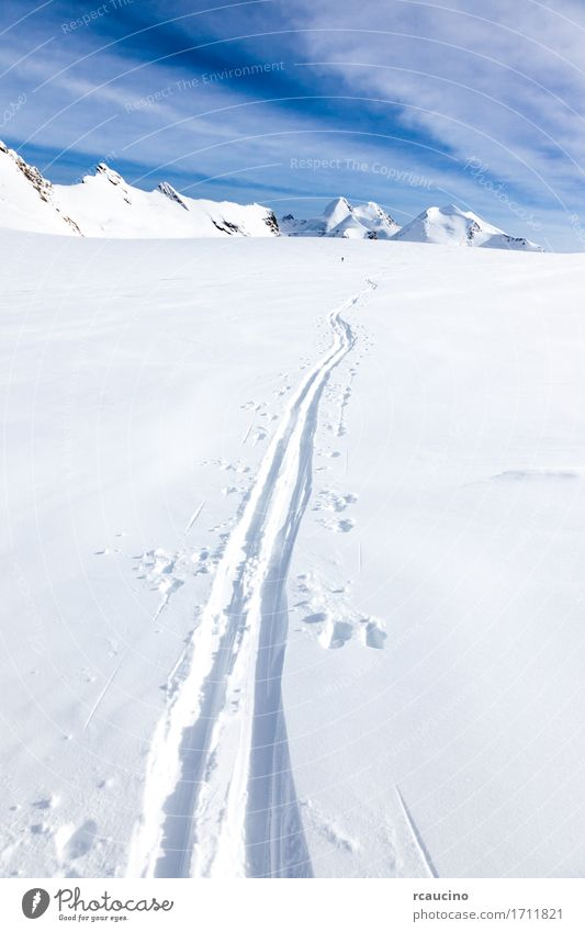 Ski tracks on glacier Monte Rosa Switzerland Human being Sky Nature Vacation & Travel Beautiful White Landscape Winter Mountain Lanes & trails Sports Snow