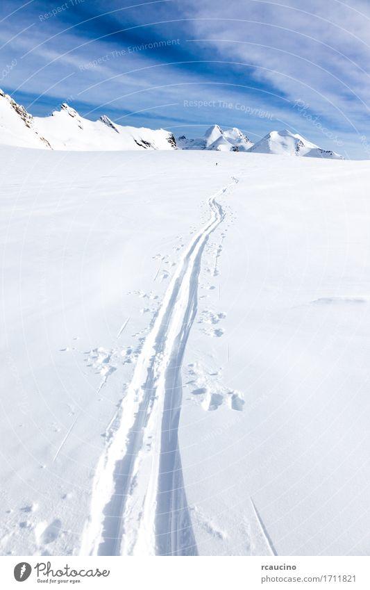 Ski tracks on glacier Monte Rosa Switzerland Human being Sky Nature Vacation & Travel Beautiful White Landscape Winter Mountain Lanes & trails Sports Snow Tourism Europe Vantage point Adventure
