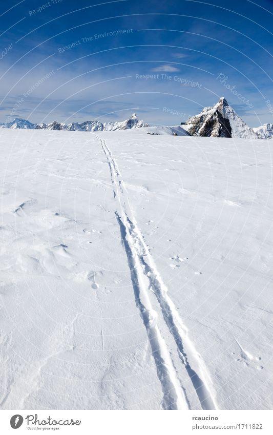 Ski track on fresh snow Matterhorn glacier Switzerland Sky Nature Vacation & Travel Blue Beautiful White Landscape Winter Mountain Lanes & trails Sports Snow Tourism Europe Vantage point Adventure