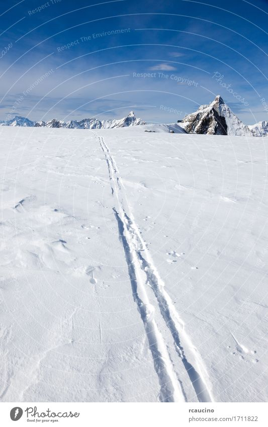 Ski track on fresh snow Matterhorn glacier Switzerland Sky Nature Vacation & Travel Blue Beautiful White Landscape Winter Mountain Lanes & trails Sports Snow