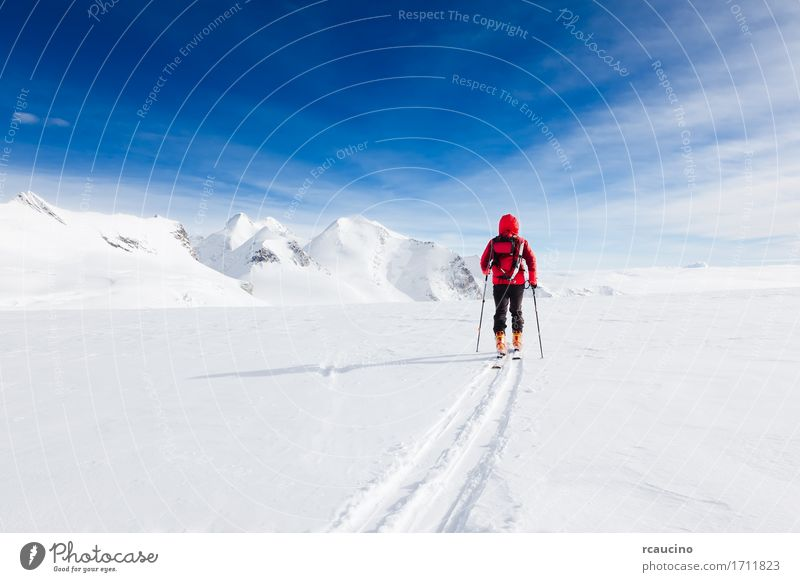 Mountaineer walking on a glacier with skis Monte Rosa Italy Human being Sky Nature Vacation & Travel Man Blue Colour White Landscape Red Loneliness Winter Mountain Adults Cold Lanes & trails