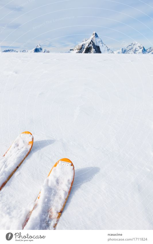 Ski tips on a glacier in background the Matterhorn Sky Nature Vacation & Travel Colour White Landscape Joy Winter Mountain Sports Snow Tourism Copy Space Europe Vantage point Energy