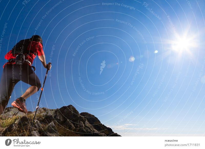 Skyrunner runs uphill along a mountain trail. Human being Sky Nature Man Summer Sun Landscape Red Loneliness Mountain Adults Lanes & trails Sports Freedom Hiking Power