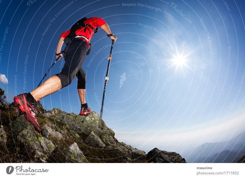 Skyrunning: rear view of a young male runner Human being Nature Man Summer Sun Landscape Red Loneliness Mountain Adults Lanes & trails Sports Freedom Hiking