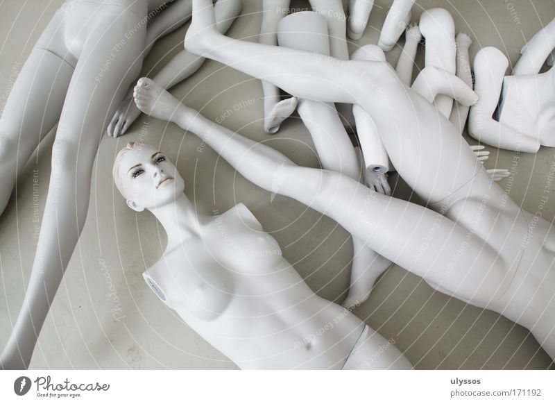 Hand White Feminine Naked Head Gray Legs Feet Body Mouth Arm Nose Masculine Ear Lips Chest