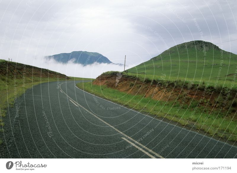 fog Colour photo Exterior shot Deserted Day Panorama (View) Vacation & Travel Tourism Nature Landscape Spring Autumn Weather Fog Hill Street Emotions Moody