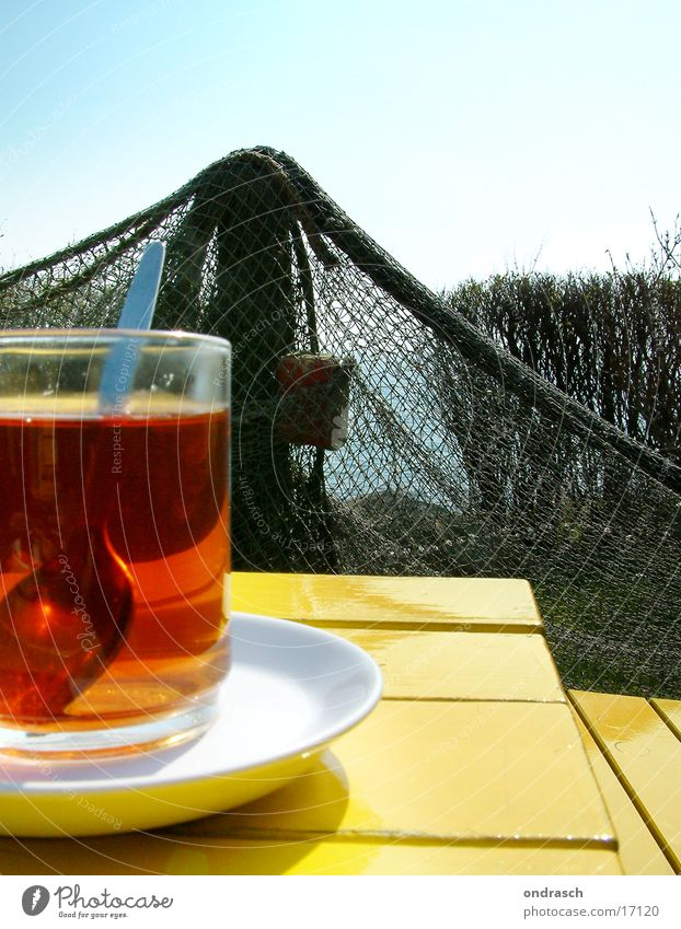 Sun Ocean Relaxation Yellow Coast Time Wait Table Drinking Baltic Sea Net Tea Wooden table Hedge Saucer Teatime