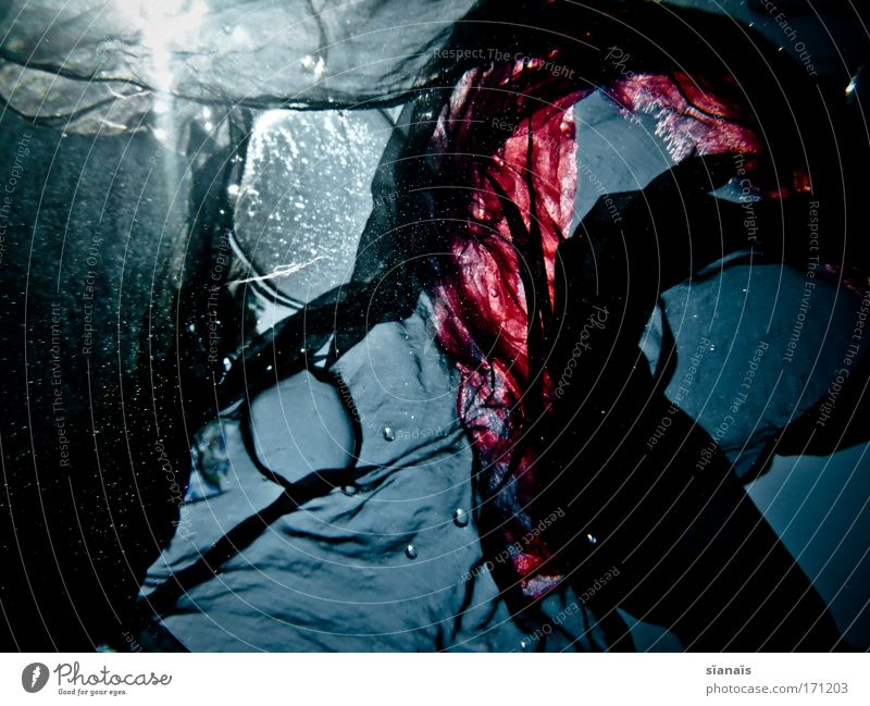 Blue Water Black Dark Dream Waves Esthetic Cloth Mysterious Dive Fantastic Fluid Transparent Air bubble Textiles Scarf