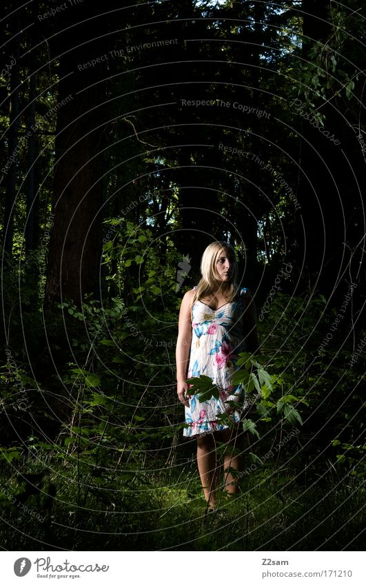 alone in the dark Exterior shot Artificial light Looking away Feminine Young woman Youth (Young adults) 18 - 30 years Adults Nature Forest Fashion Dress Blonde