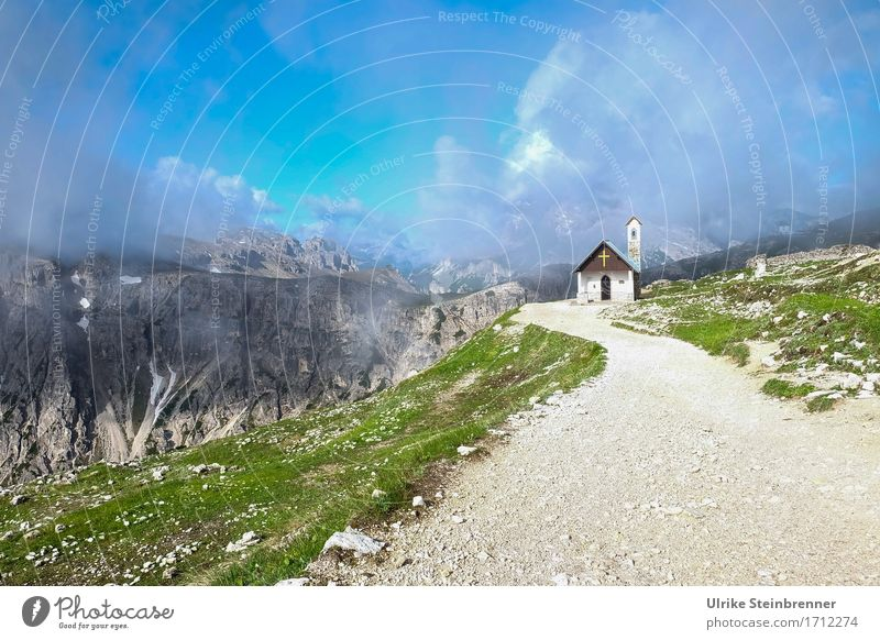 Skywards Vacation & Travel Tourism Trip Summer vacation Mountain Hiking Environment Nature Landscape Clouds Beautiful weather Bad weather Fog Grass Rock Alps
