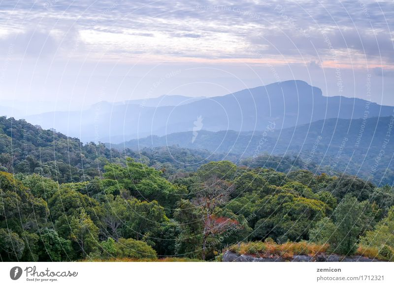 landscape scene and sunrise in morning over the mountains Beautiful Vacation & Travel Summer Sun Mountain Nature Landscape Sky Clouds Horizon Fog Tree Forest