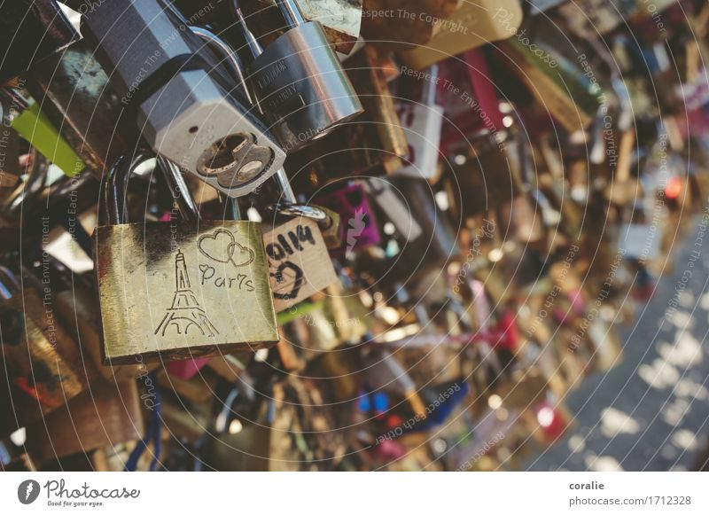 Beautiful Love Funny Crazy Gold Bridge Romance Safety Many Kitsch Capital city France Hip & trendy Relationship Summer vacation Infatuation