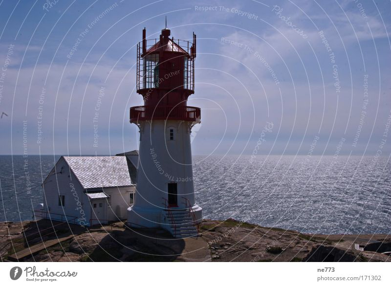 The lighthouse of Lindesnes in Norway Colour photo Exterior shot Deserted Copy Space right Neutral Background Reflection Panorama (View) Vacation & Travel