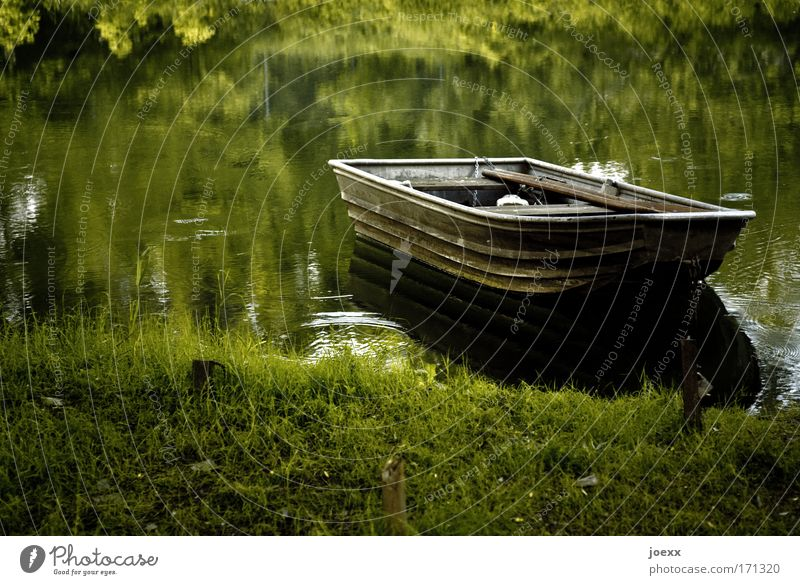 Fisherman's Friend Colour photo Exterior shot Copy Space left Morning Dawn Evening Twilight Nature Water Lakeside River bank Pond Calm fishing boat Meadow