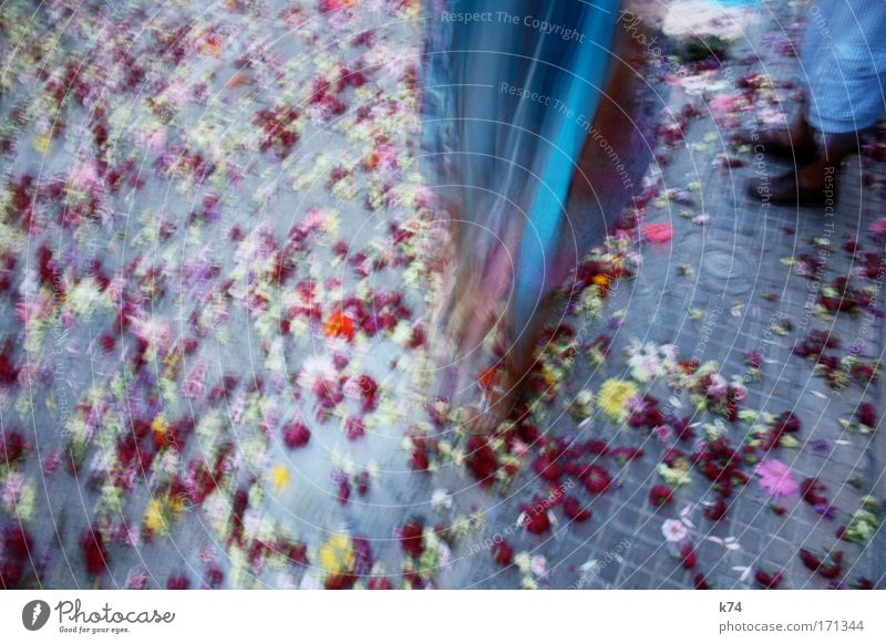 Broken Flowers Blossom Cloth Costume Street Multicoloured Gray Blue Red Footwear Feasts & Celebrations Movement Blur