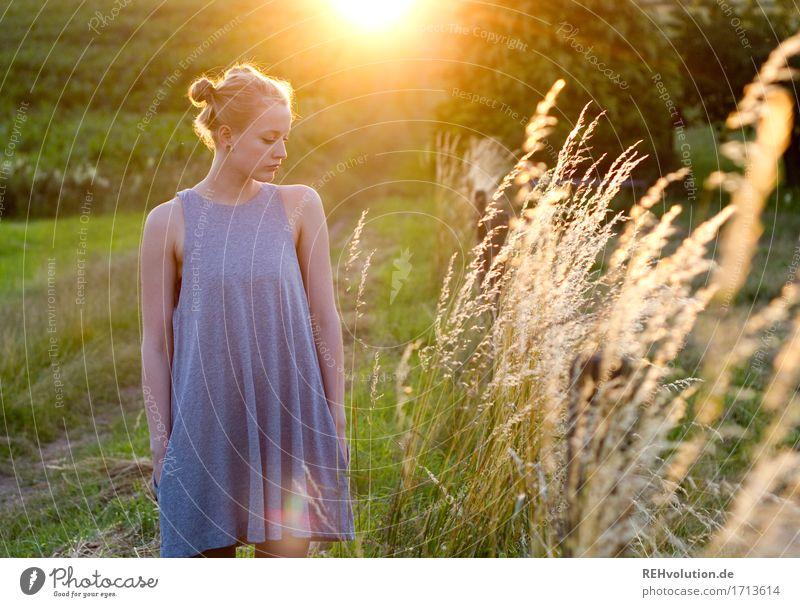 Alexa in the evening light. Summer Feminine Young woman Youth (Young adults) 1 Human being 18 - 30 years Adults Environment Nature Landscape Meadow Field Dress