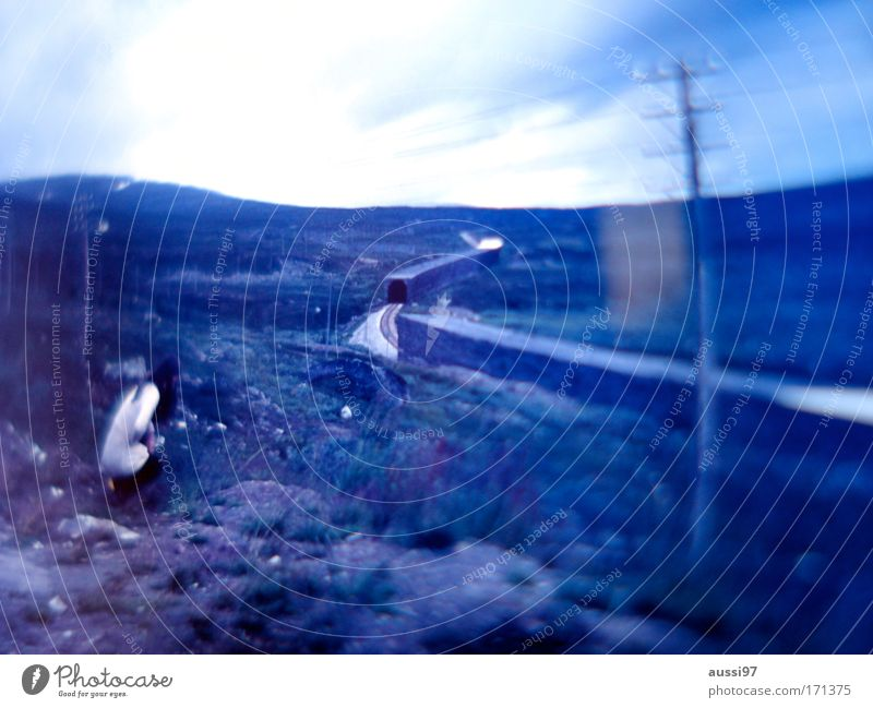 Analogue hope Colour photo Exterior shot Twilight Blur Wide angle Rear view Downward Looking away Woman Adults 1 Human being Environment Climate change Hill