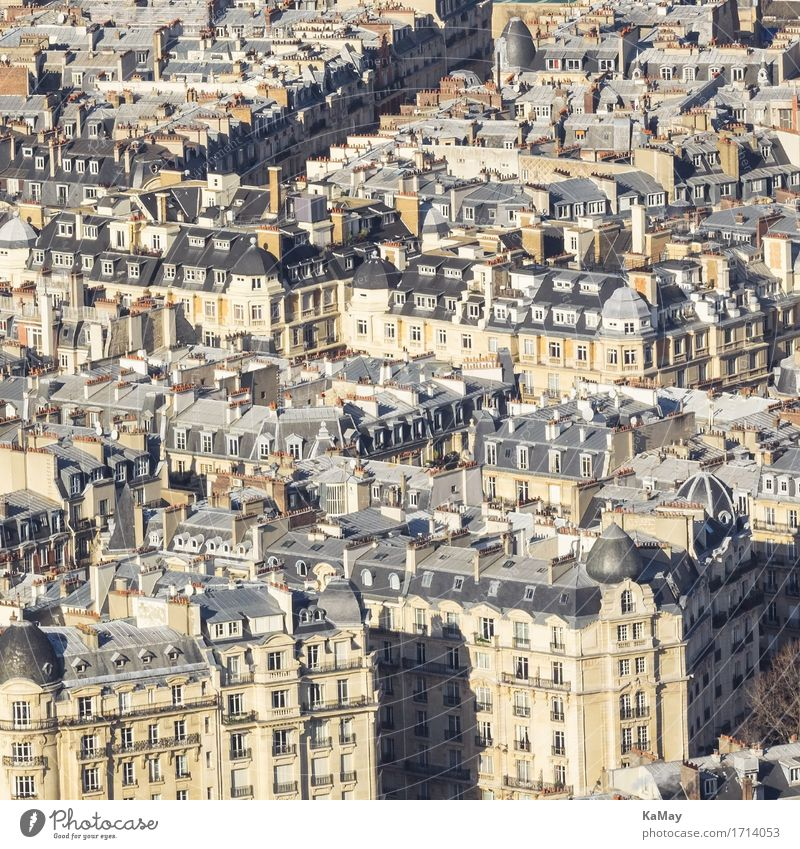 Sea of houses of Paris France Europe Capital city Downtown Old town Deserted House (Residential Structure) Manmade structures Building Architecture Famousness