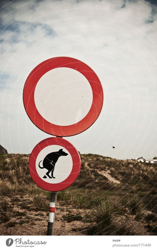Animal Dog Environment Funny Signs and labeling Feces Beach dune Transport Road sign Bans Environmental protection Environmental pollution Laws and Regulations