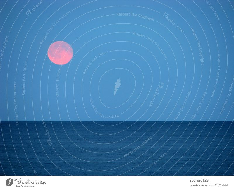 Moonrise at the sea Colour photo Exterior shot Deserted Twilight Long shot Nature Water Sky Full  moon Ocean Blue Contentment Calm Wanderlust Power Day