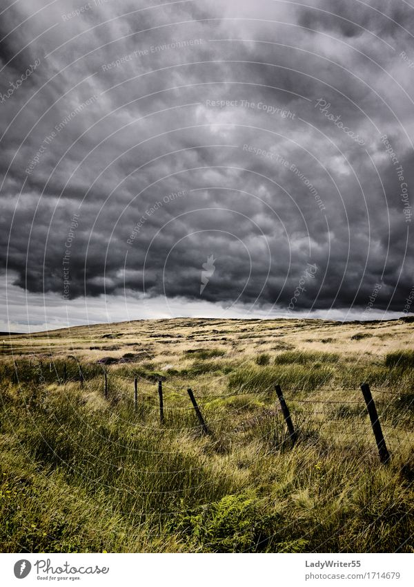 Atmospheric Moorland Environment Nature Landscape Sky Clouds Climate Weather Storm Rain Grass Meadow Dark Natural Gloomy Gray Green Moody Fear Horror Dangerous