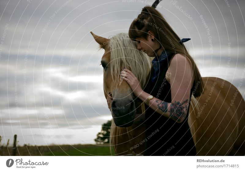 fluffy mane Leisure and hobbies Ride Human being Feminine Young woman Youth (Young adults) 1 18 - 30 years Adults Environment Nature Landscape Meadow Field
