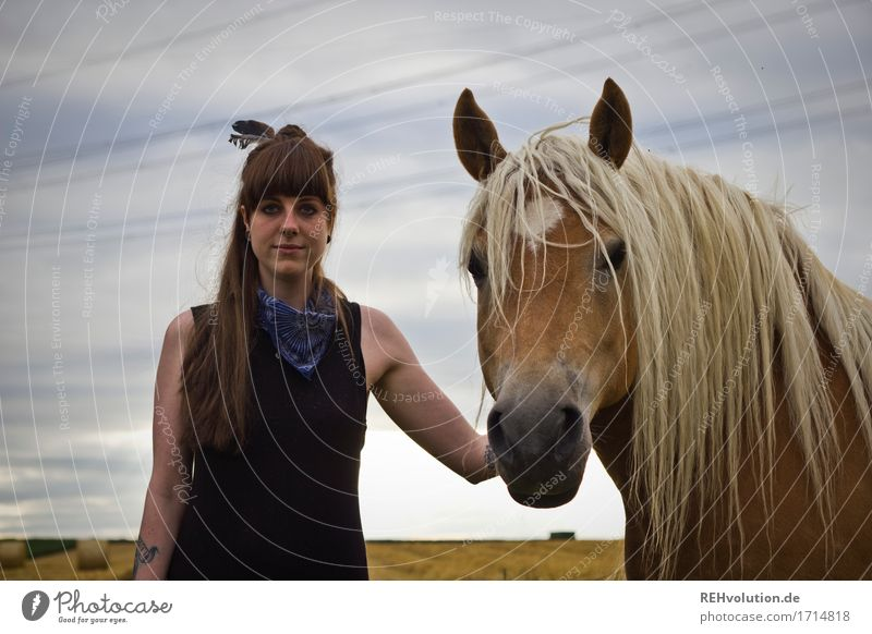 Carina and the Haflinger. Leisure and hobbies Ride Human being Feminine Young woman Youth (Young adults) 1 18 - 30 years Adults Environment Nature Field Dress