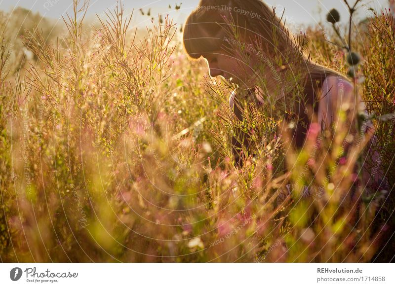 Carina | Flower meadow Human being Feminine Young woman Youth (Young adults) 1 18 - 30 years Adults Environment Nature Landscape Plant Sun Sunrise Sunset