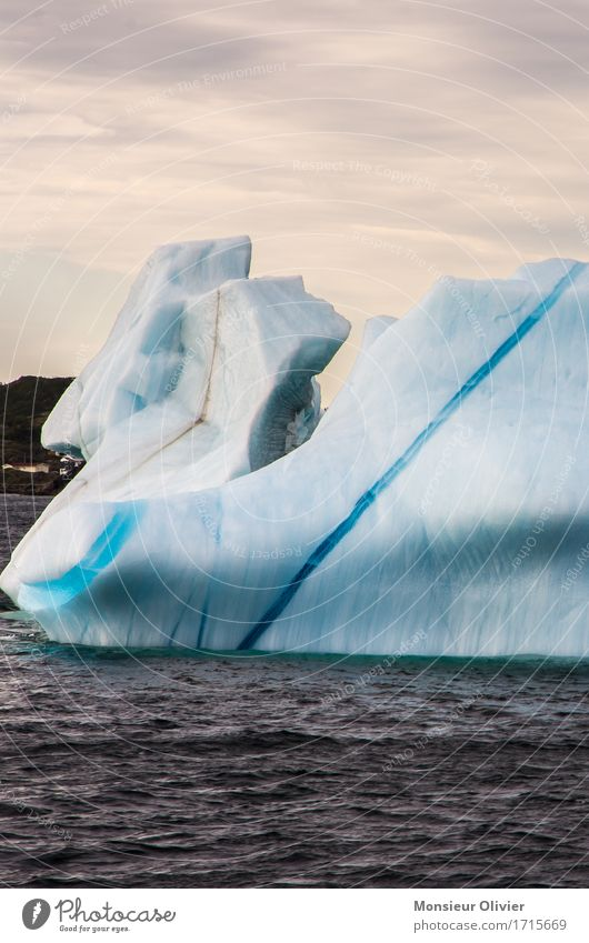 Iceberg, Twillingate Environment Nature Landscape Climate Frost Ocean Cold Blue Canada twillingate Newfoundland Structures and shapes Colour photo Exterior shot