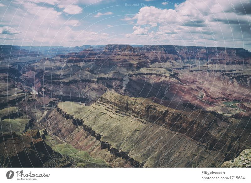 Beautiful America (p) Sky Clouds Day Shadow Mountain Grand Canyon Americas USA Landscape Plant Animal Vantage point Far-off places Deserted Bushes