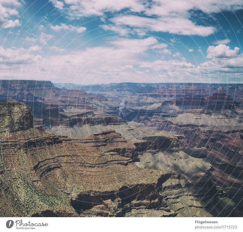 Beautiful America (r) Sky Clouds Day Shadow Mountain Grand Canyon Americas USA Landscape Plant Animal Vantage point Far-off places Deserted Bushes