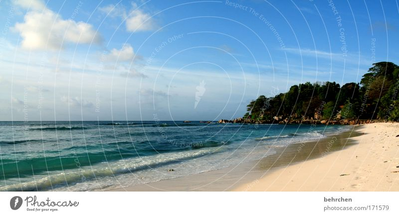 Sky Summer Beach Vacation & Travel Ocean Clouds Far-off places Freedom Happy Dream Coast Waves Contentment Trip Island Tourism