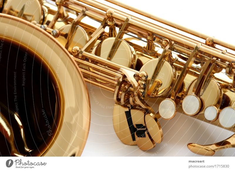 sax Saxophone Wind instrument flakes Flap Woodwind instrument Music Musical instrument Detail Close-up Mother-of-pearl