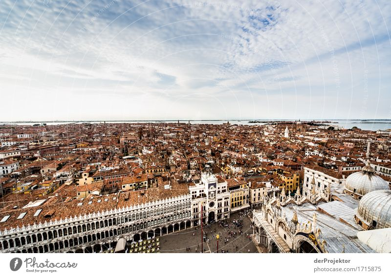 View of St Mark's Square in Venice Vacation & Travel Tourism Trip Adventure Far-off places Sightseeing City trip Cruise Summer Summer vacation Island