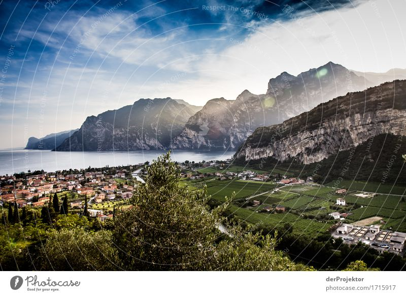 Sunset at Lake Garda Vacation & Travel Tourism Trip Adventure Sightseeing City trip Summer vacation Environment Nature Landscape Plant Animal Field Hill Rock